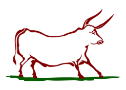 Native Beef logo